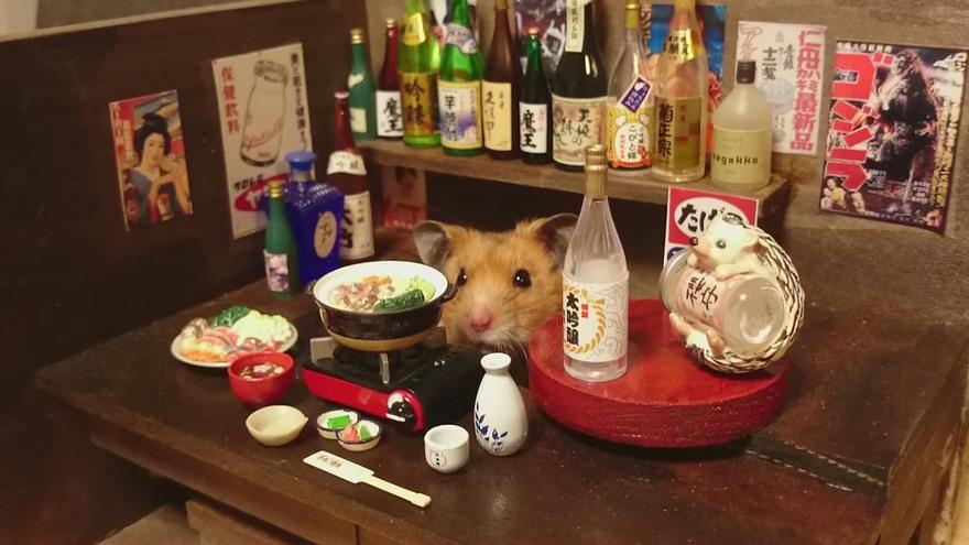 little hamster bartenders serving tiny food and drinks bored panda. Black Bedroom Furniture Sets. Home Design Ideas