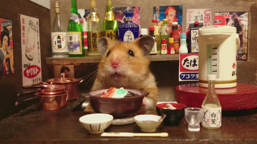 http://static.boredpanda.com/blog/wp-content/uploads/2014/11/hamster-bartender-miniature-bar-kawanabesatou-17.jpg