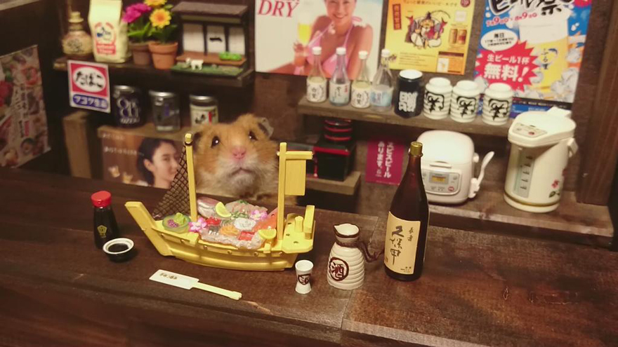 http://static.boredpanda.com/blog/wp-content/uploads/2014/11/hamster-bartender-miniature-bar-kawanabesatou-18.jpg