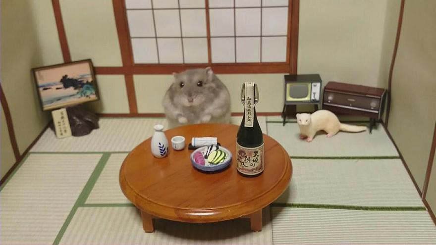 hamster-bartender-miniature-bar-kawanabesatou-6