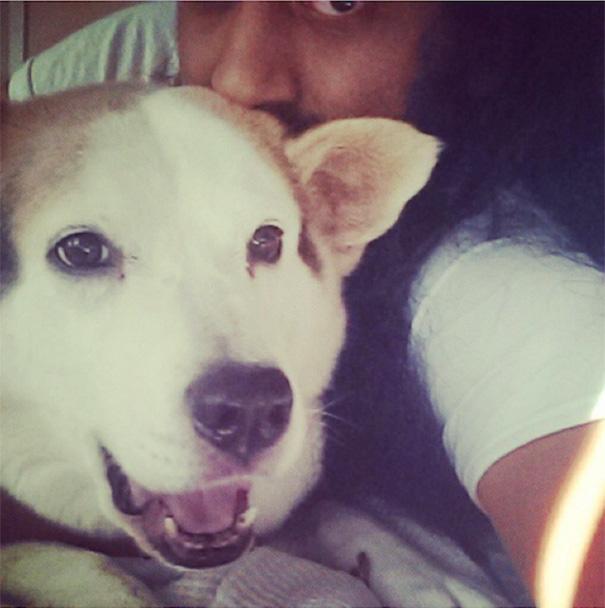 The Sneaky Dog Selfie