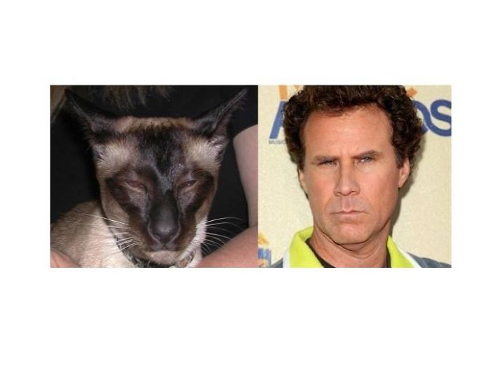 Stinker And Will Ferrell