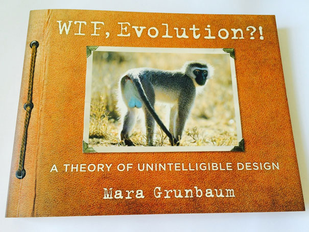 wtf-evolution-strange-animals-3