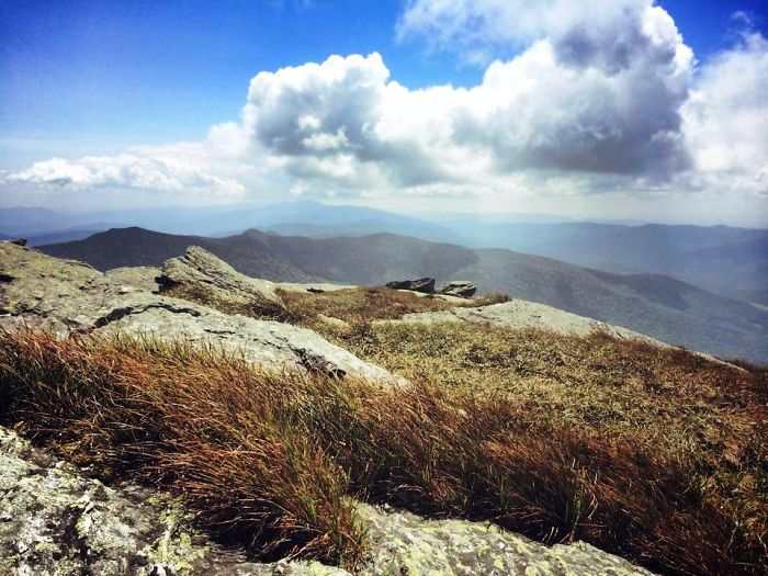 The Green Mountains As Seen From Camel's Hump, Vt – C.m. Jones