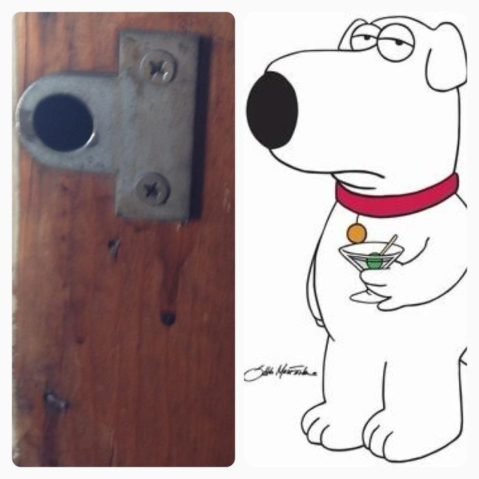 Hardware Vs. Brian Griffin