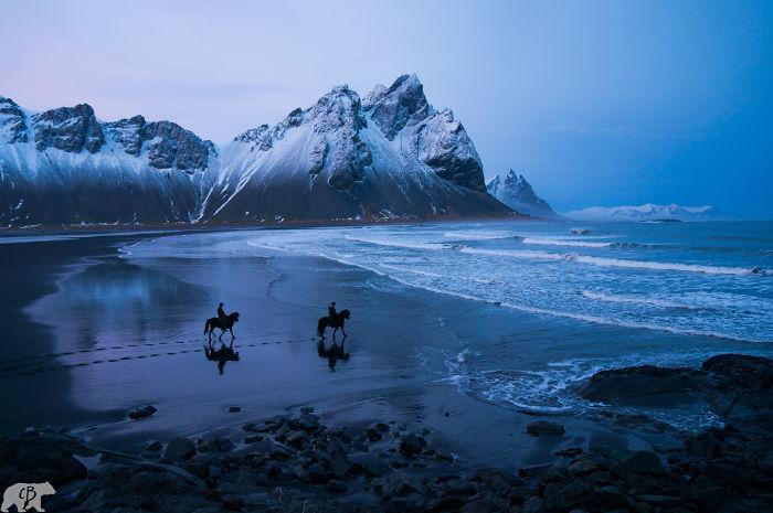 Horses On Hofn Beach