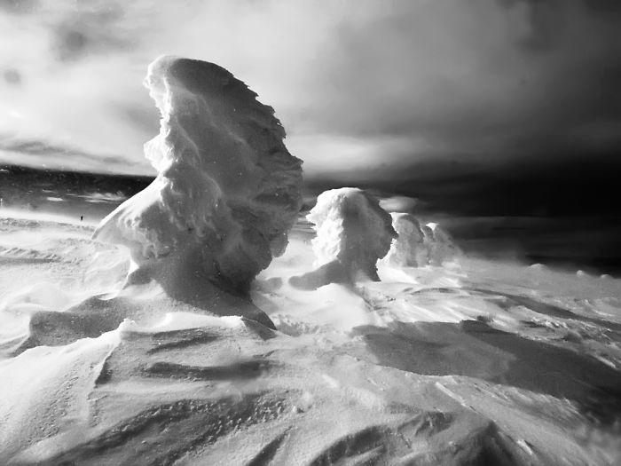 Winter Portraits (photo: Vladimir Gergov)
