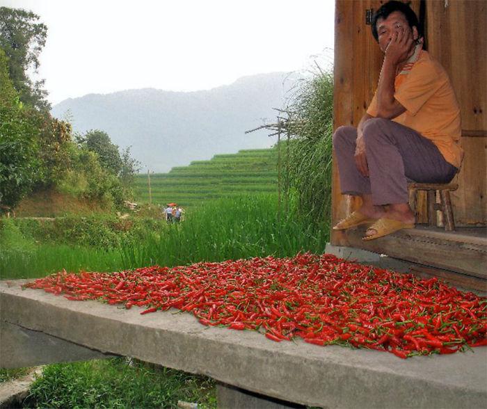 Longji Titian, China – Chili Merchant