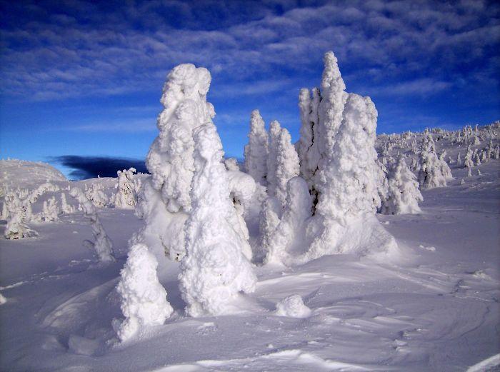 Big White Snowghosts