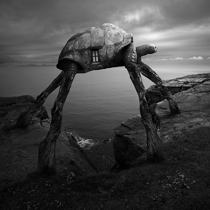 Surreal Portraits Of Animals Traveling The Earth