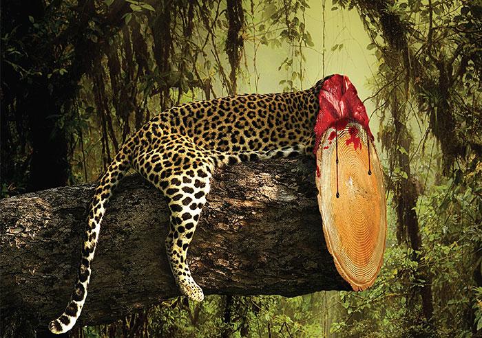 Shocking Effects Of Deforestation Exposed In Brutal Print Ads