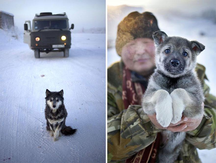 mais fria-village-Oymyakon-russia-amos-chaple-2