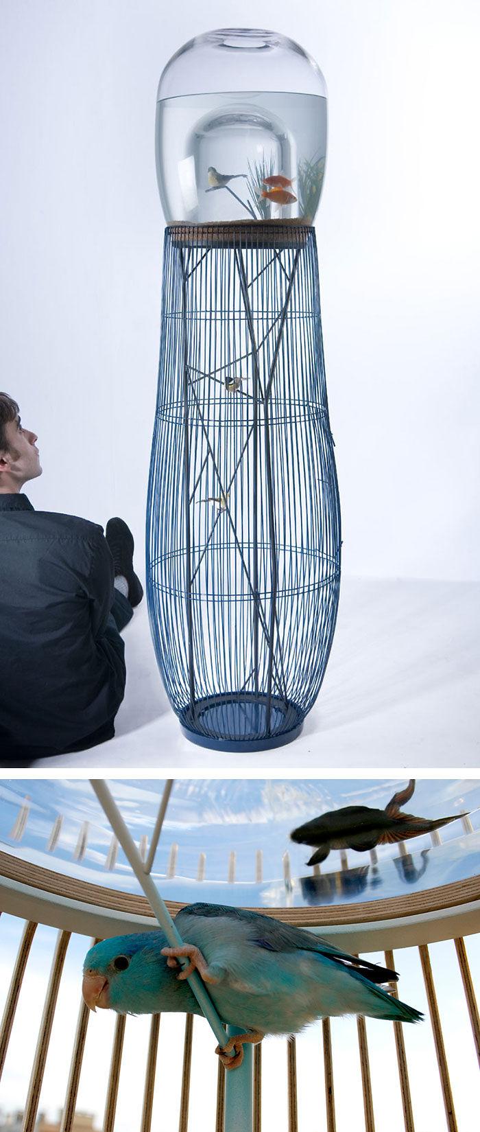 Duplex Aquarium / Bird Cage