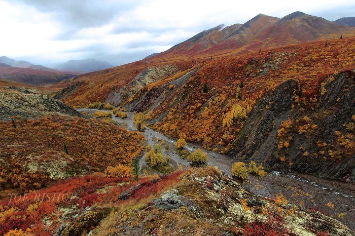 Little Creek, Tombstone Park, Yukon