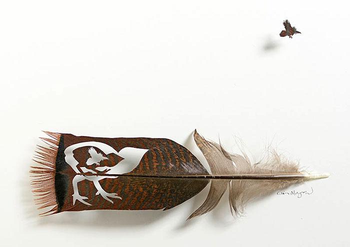 feather-art-chris-maynard-3