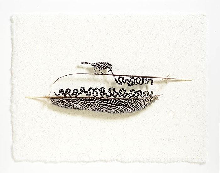 feather-art-chris-maynard-8