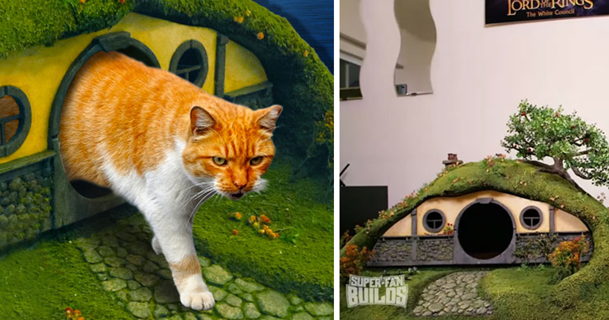 lord of the rings litter box and sauron scratching post for cats bored panda - Lord Of The Rings Hobbit Home
