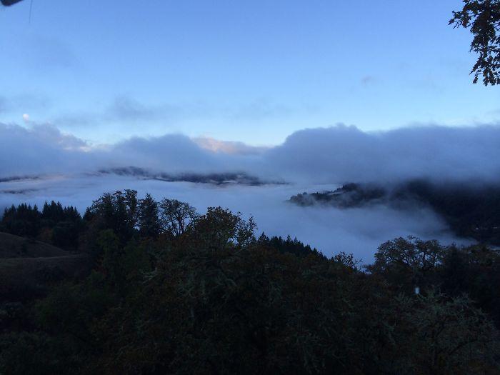 Humboldt County Fog