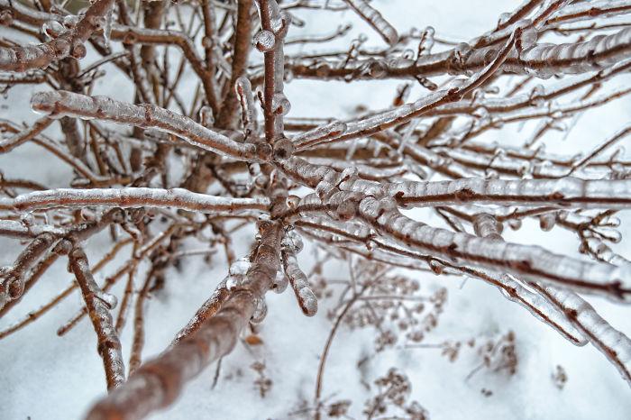 Frozen Rain In Canada