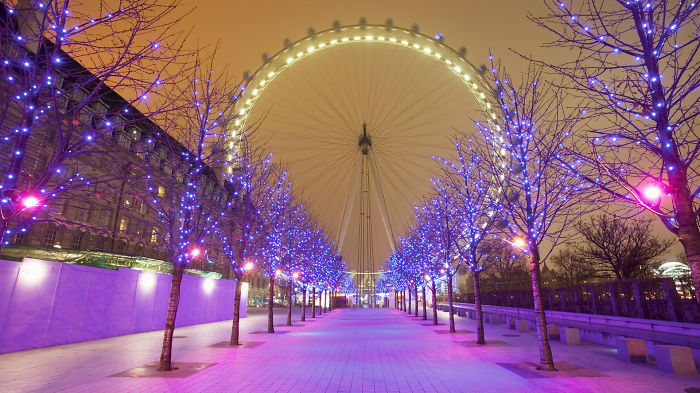 London Eye Purple Christmas Lights