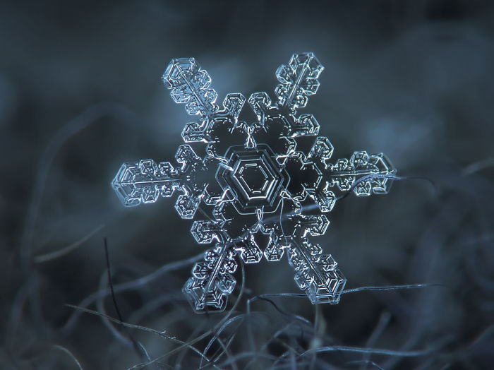 An Example Of A Close Up Snowflake