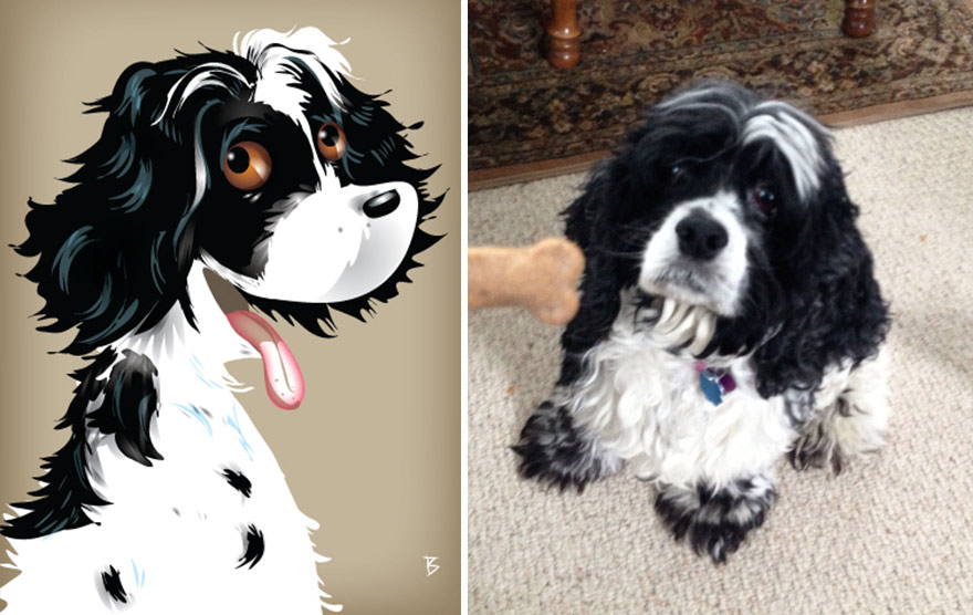 pet-portraits-drawings-chriss-beetow-5