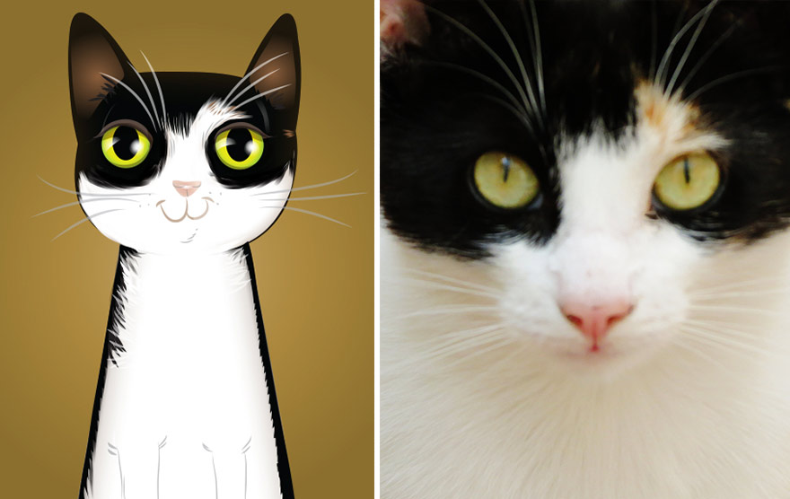 pet-portraits-drawings-chriss-beetow-6