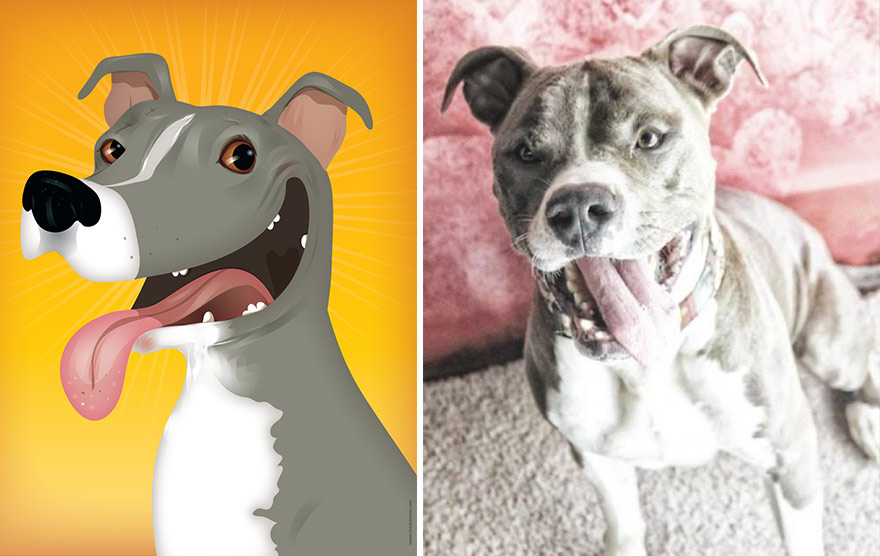 pet-portraits-drawings-chriss-beetow-8