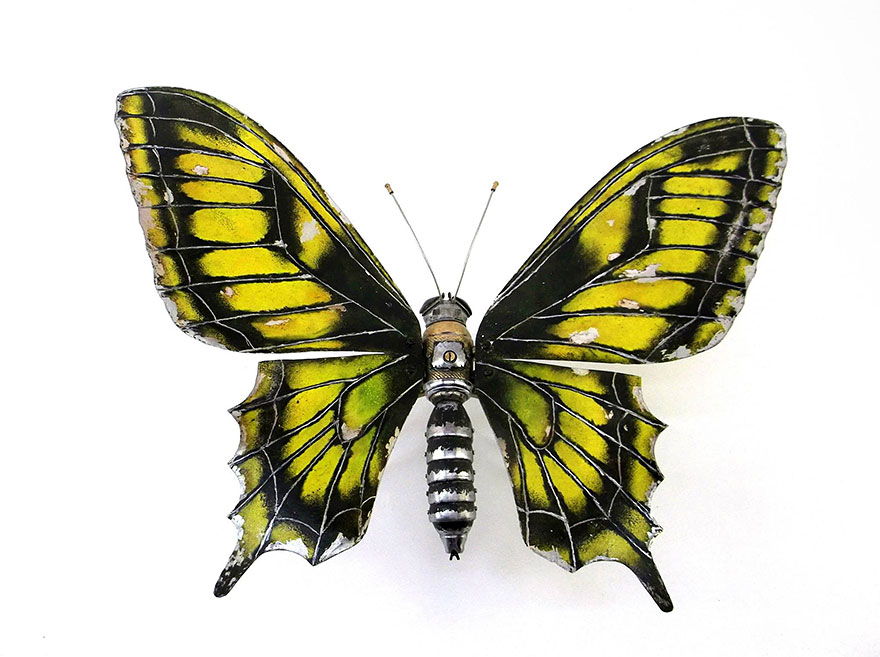 حيوانات وحشرات اجزاء مهمله لسيارات
