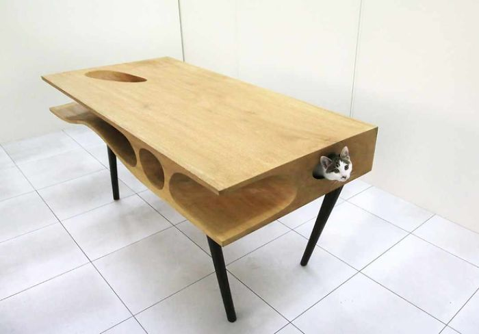 A Table With Spaces For Cats