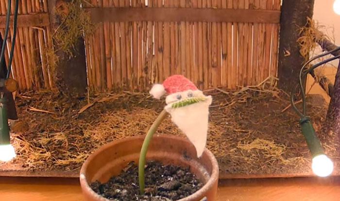 venus-flytrap-charlie-santa-costume-kluna-tik-5