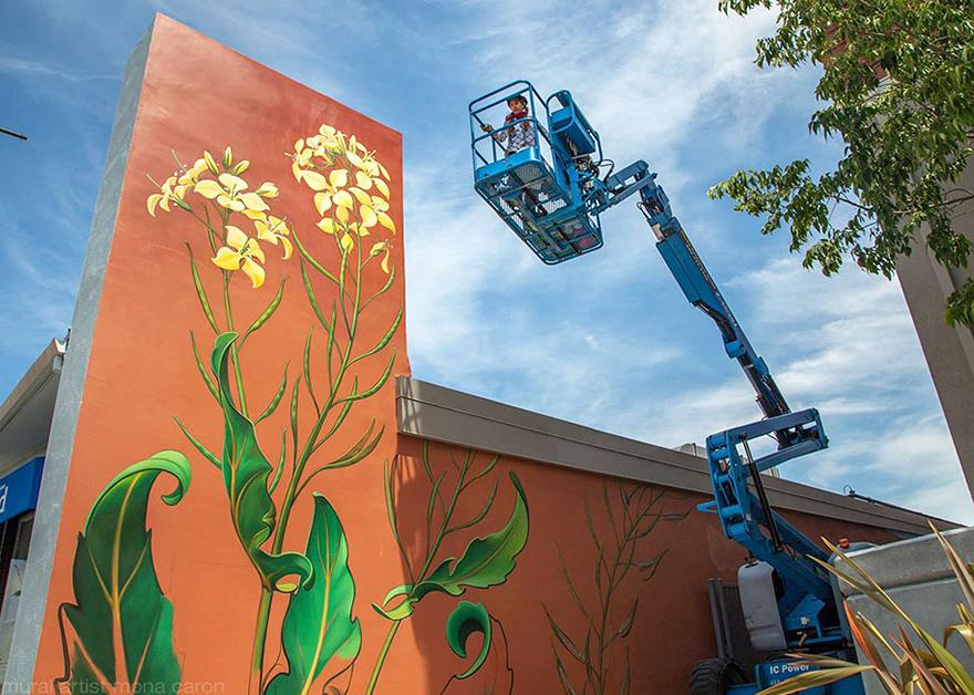 weeds-graffiti-street-art-mona-caron-11