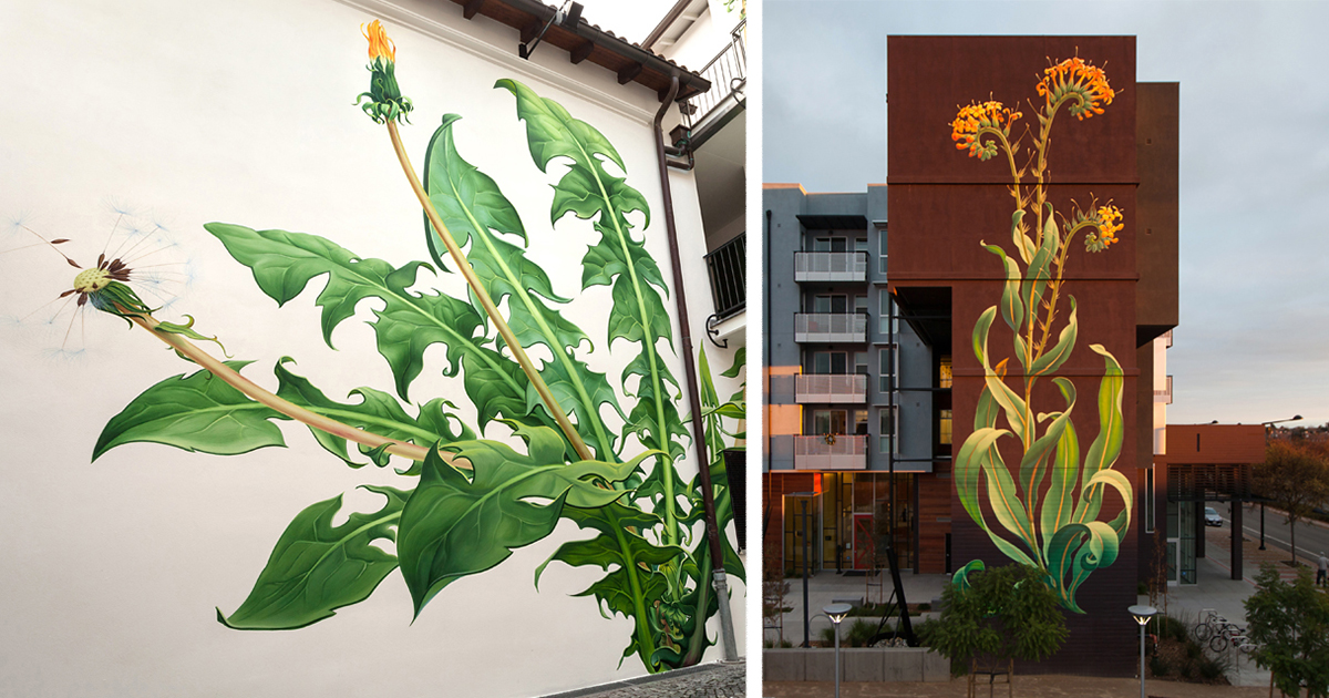I Paint Weed Murals That Slowly Take Over The City Gifs
