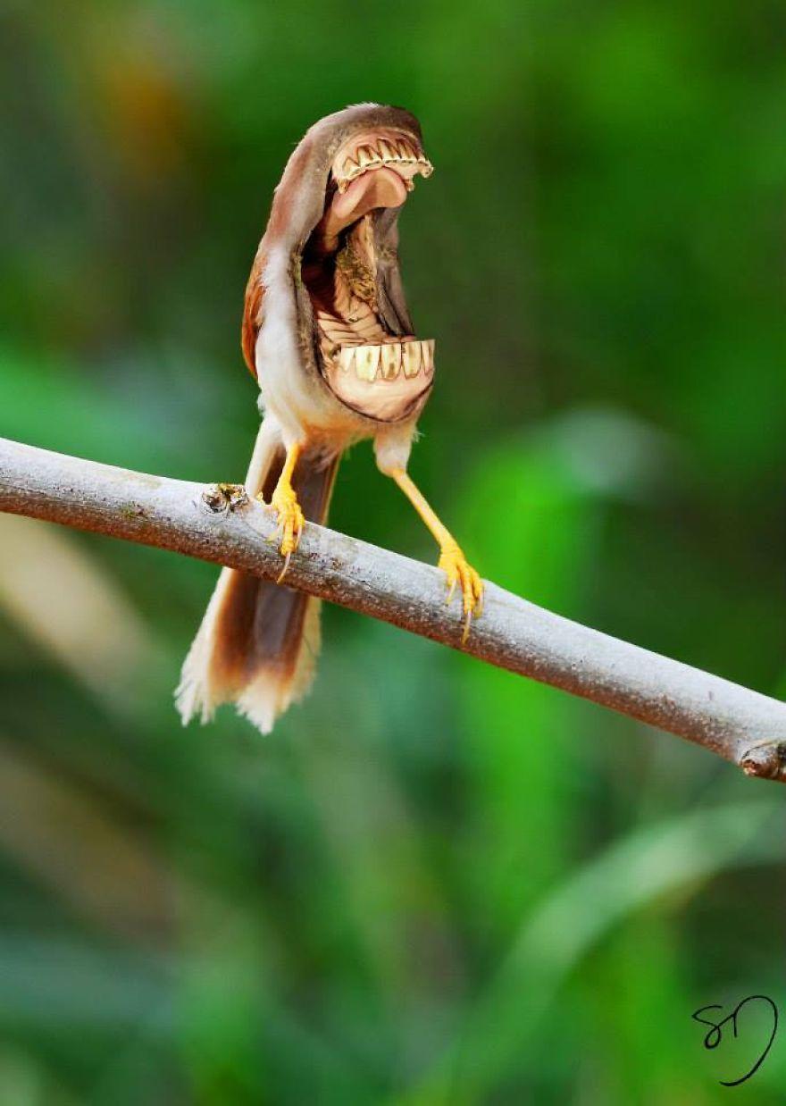 big mouth birds my newest series of hybrid animals