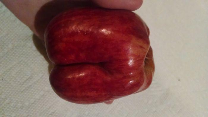 Apple Booty