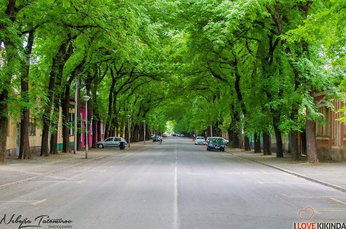 Kikinda, Serbia