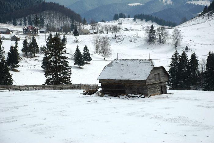 The Shelter. România