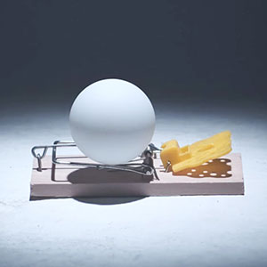 Watch 1,650 Mousetraps Set Off A Massive Ping-Pong Ball Chain Reaction