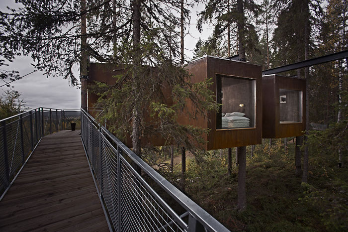 The Dragonfly (treehotels), Harads, Sweden