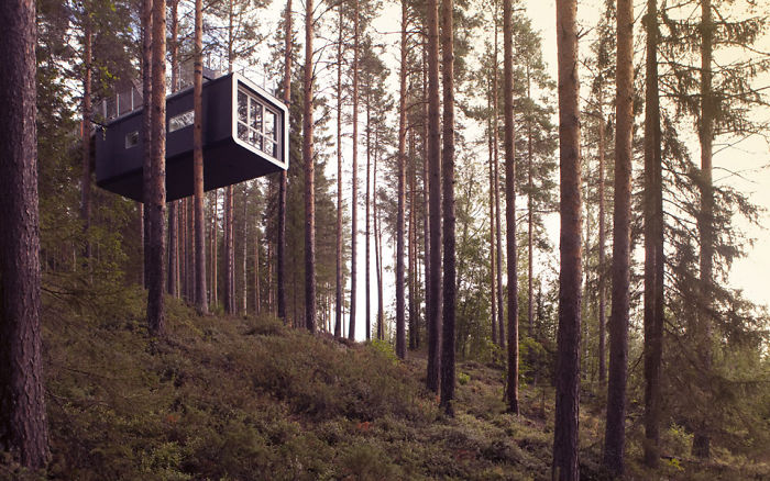 The Cabin (treehotels), Harads, Sweden