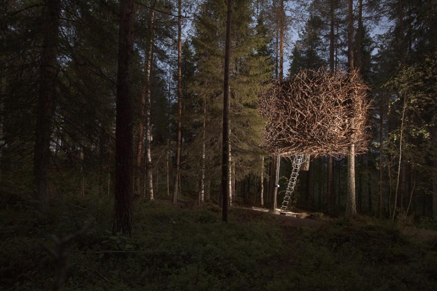 The Bird's Nest (treehotels), Harads, Sweden