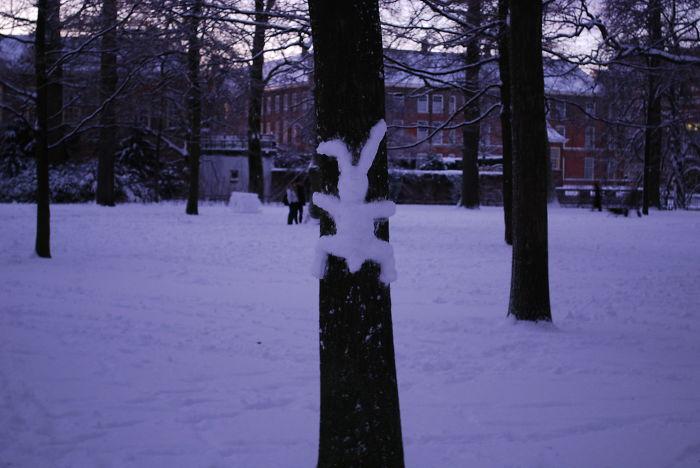 Crashed Snow Bunny