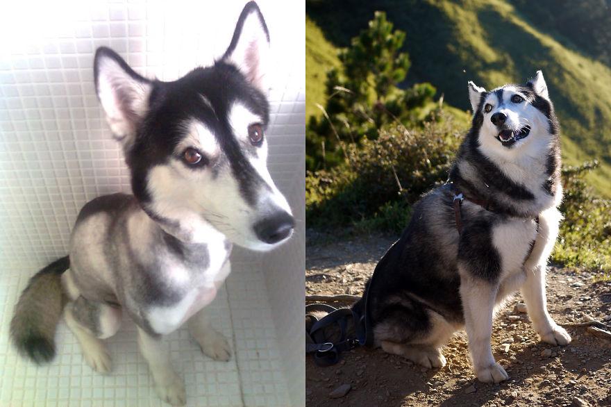 Nana After 5 Years Adoption