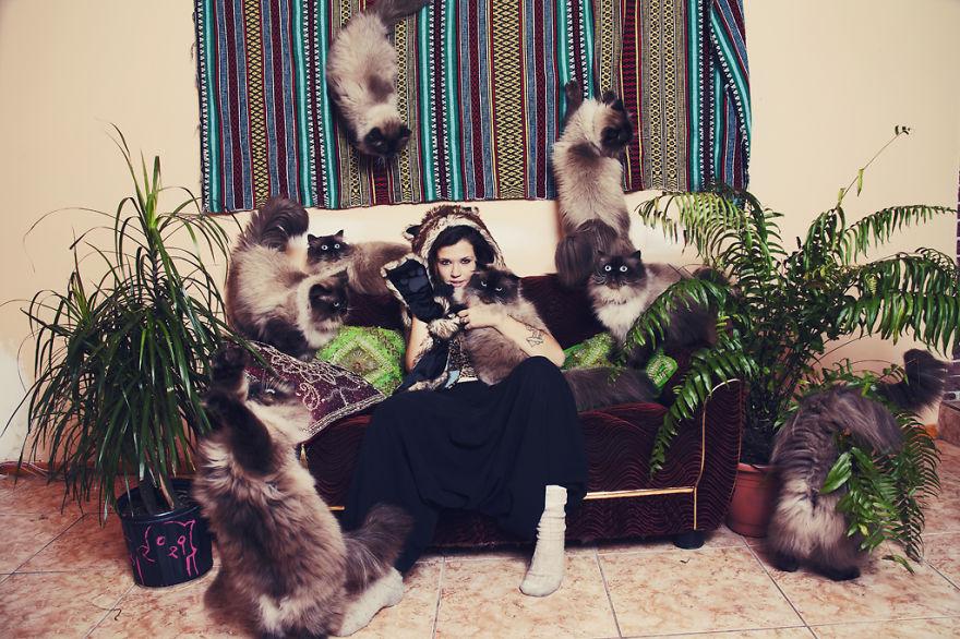 My Photos Of Crazy Cat Lovers