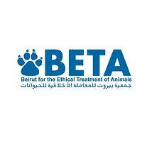 BETA Lebanon
