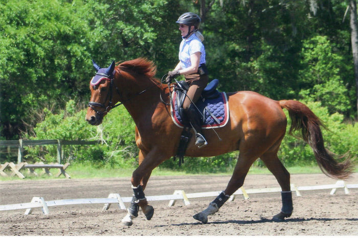 67 Year Old Lynda Fox Started Riding Horses 5 Years Ago And Now Competes In Dressage