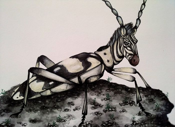 Watercolor Paintings Of Animal-insect Hybrids