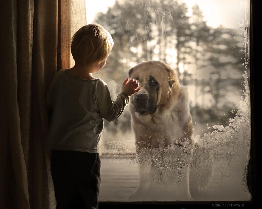 animales-niños-fotografía-elena-Shumilova-2-19