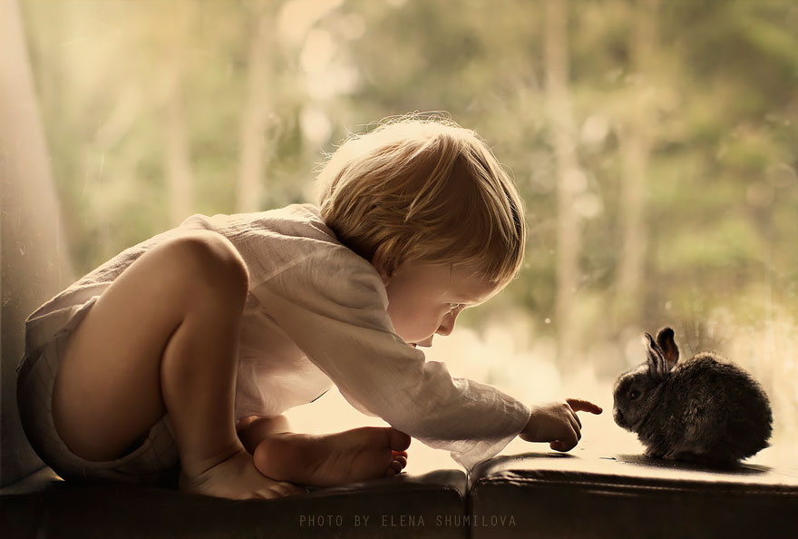 animales-niños-fotografía-elena-Shumilova-2-32