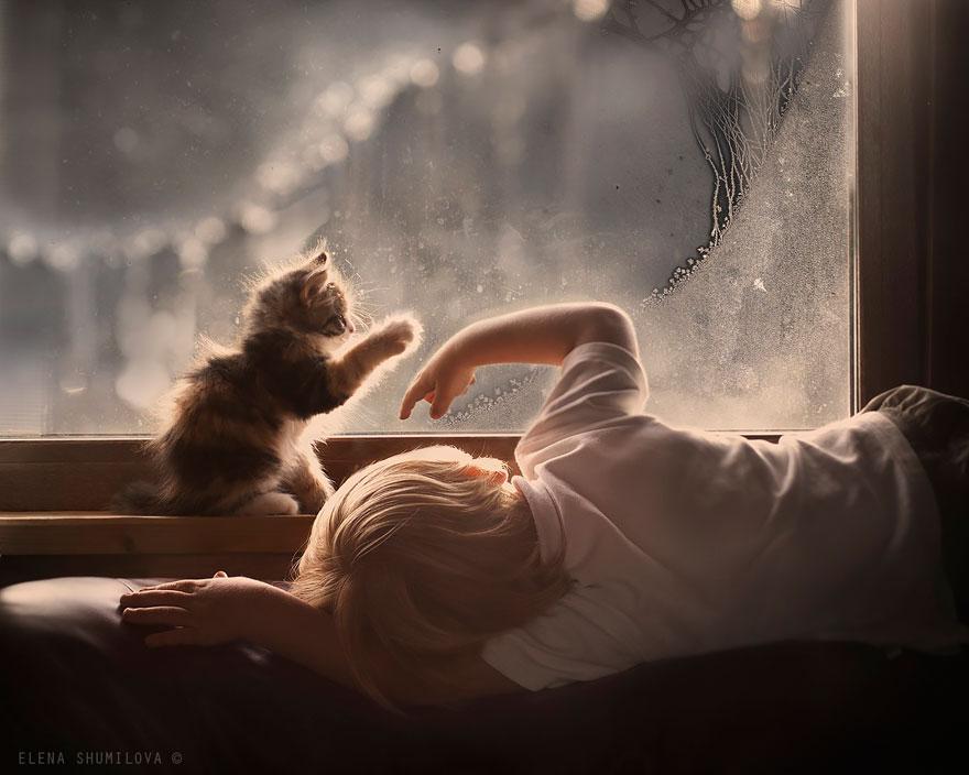 animales-niños-fotografía-elena-Shumilova-2-4
